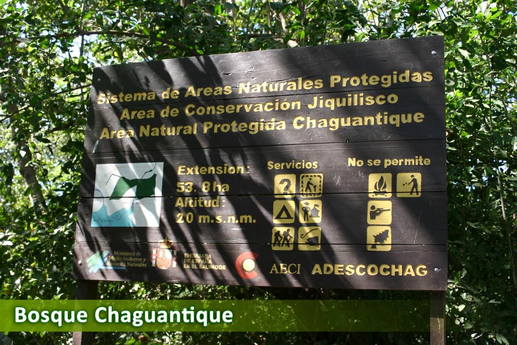 Chaguantique Jiquilisco